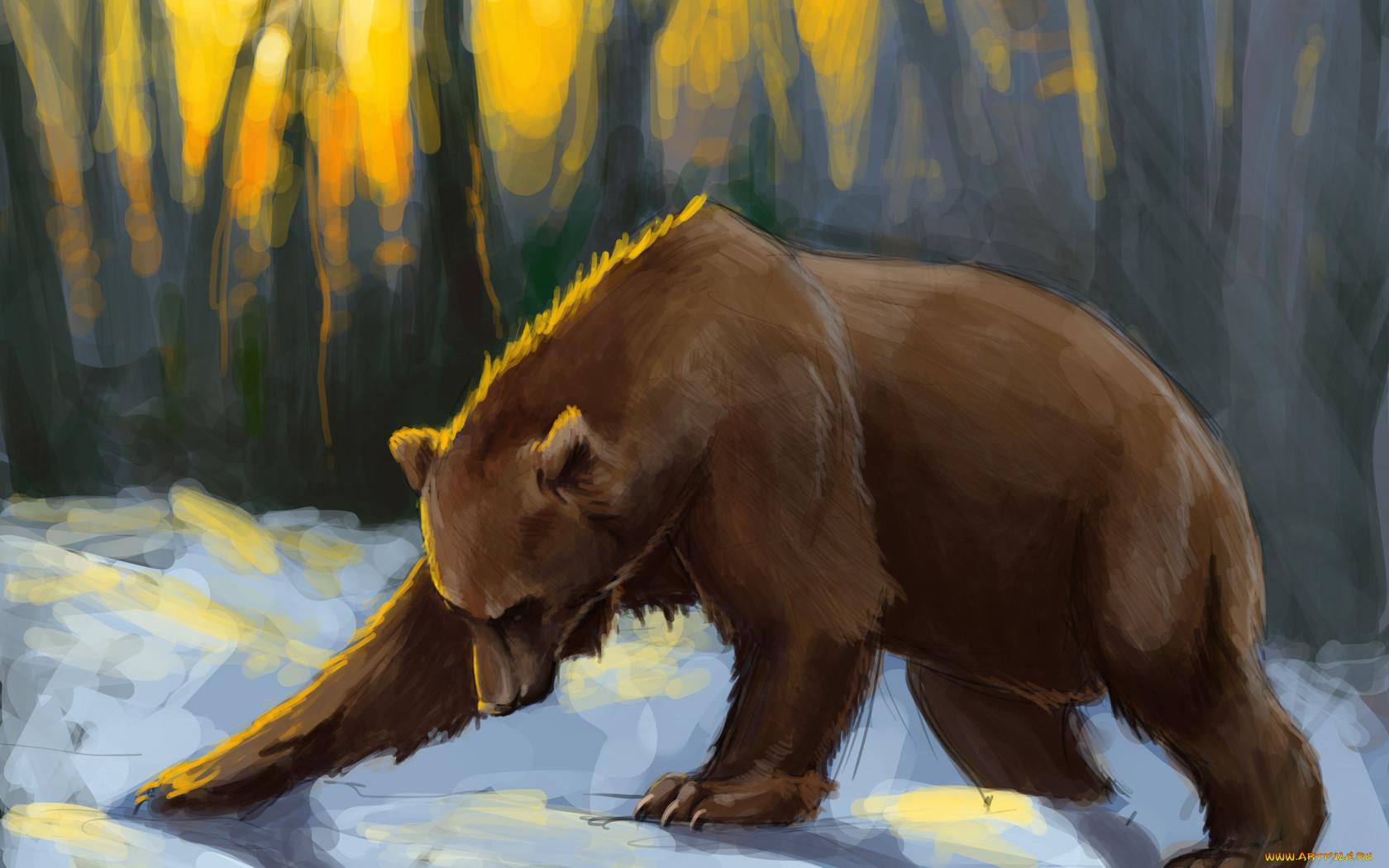 для красивые рисунки медведей более